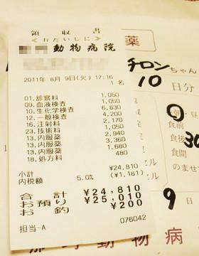 2011_0809_receipt_s.jpg