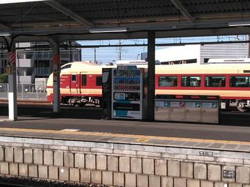 DSC_0374s.jpg