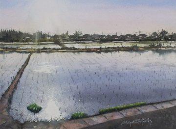 rice-planting.jpg