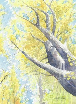 sunny_day_in_autumn.jpg